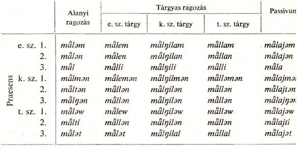 anyanyelv-hantiparadigma