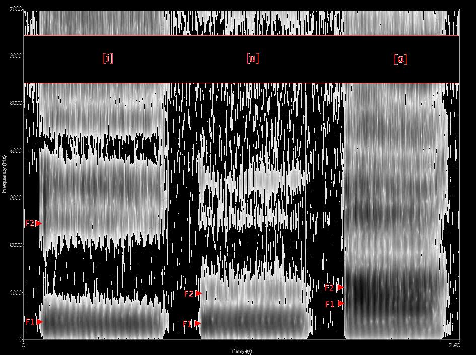 angol-nyelv-spektogram