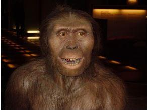 australopite